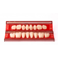 Gnathostar Side teeth Promotion