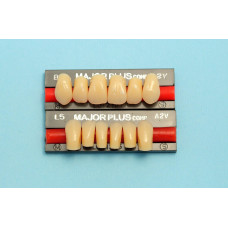 Major composite front teeth 6pcs