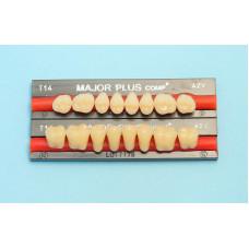 Major side composite teeth 8 pcs