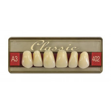 Wiedent Classic teeth fronts 6 pcs Promotion