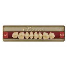 Wiedent Classic Teeth Sides 8pcs Promotion