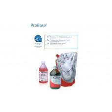 Farba horúceho polyméru ProBase ružová V 2x500 g + horký monomér ProBase 500 ml