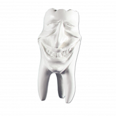 Zęby gipsowe Hinrichs tooth collection ''Mike''
