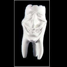 Sadrové zuby Hinrichsova zbierka zubov '' Mike ''