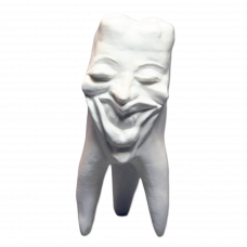 Gypsum teeth Hinrichs tooth collection '' Marylin ''