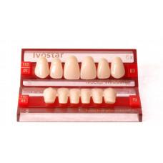 Propagace předních zubů Ivostar