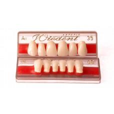 Zęby przednie WIEDENT 6szt