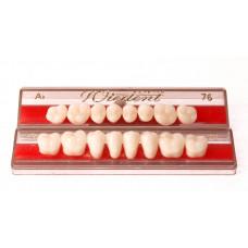 Side teeth WIEDENT 8 pcs