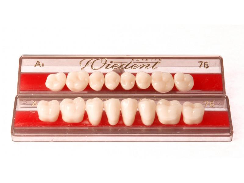 Zęby boczne WIEDENT 8 szt