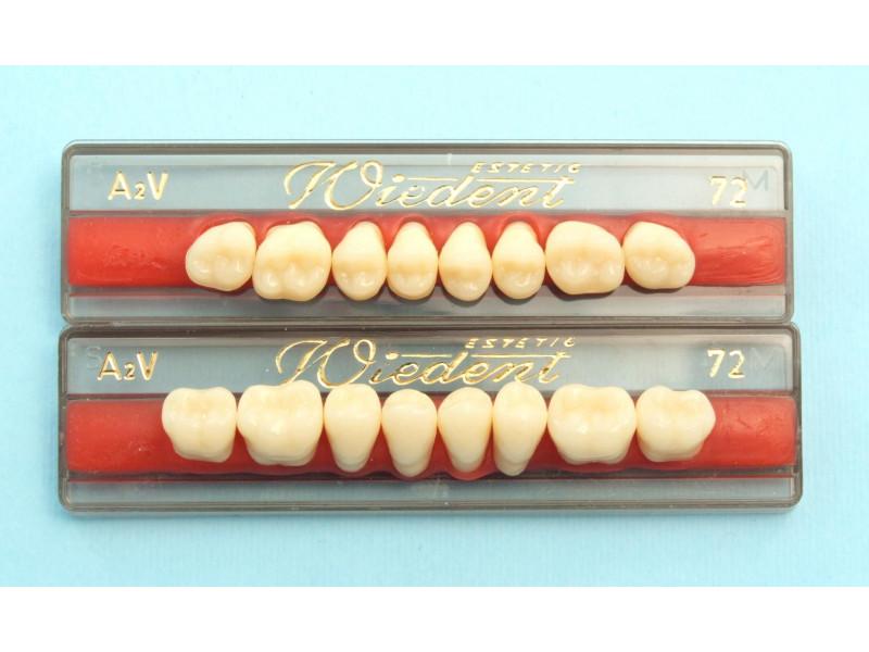 Zęby boczne WIEDENT wg. Vity 8szt