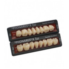 Phonares Type II composite posterior teeth. Available on request