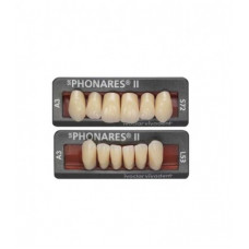 Phonares Type II composite front teeth. Available on request